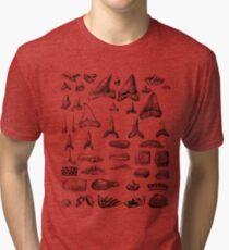 Shark Teeth and Shells Fossils Archeology & Natural History Tri-blend T-Shirt