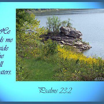 """""""He leads me beside still waters"""" by budrfli"""