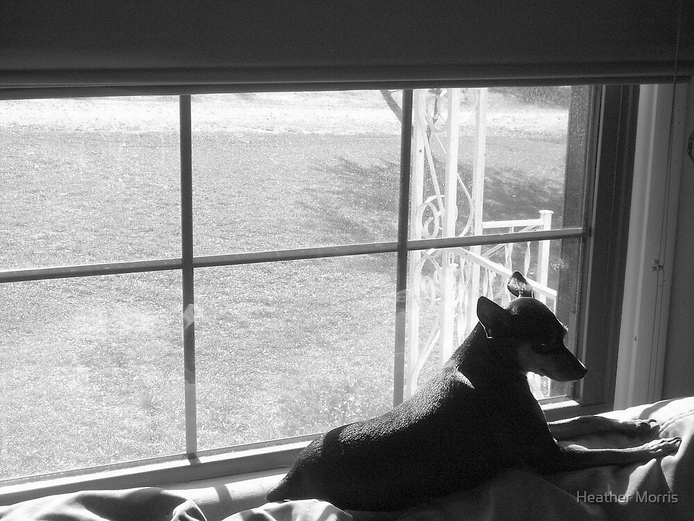 Watchin the Day Go By by Heather Morris