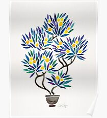 Bonsai Fruit Tree – Lemons Poster
