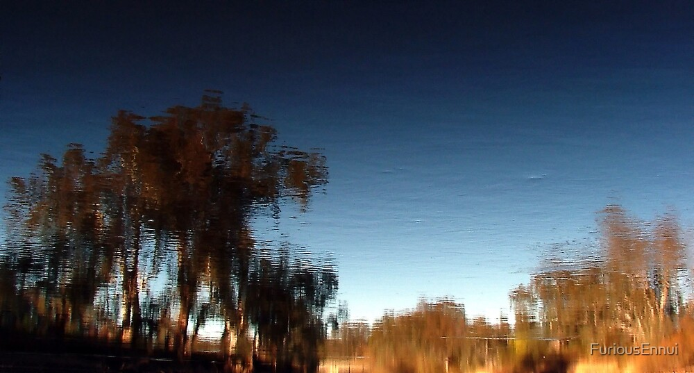 Murray River Reflections II by FuriousEnnui