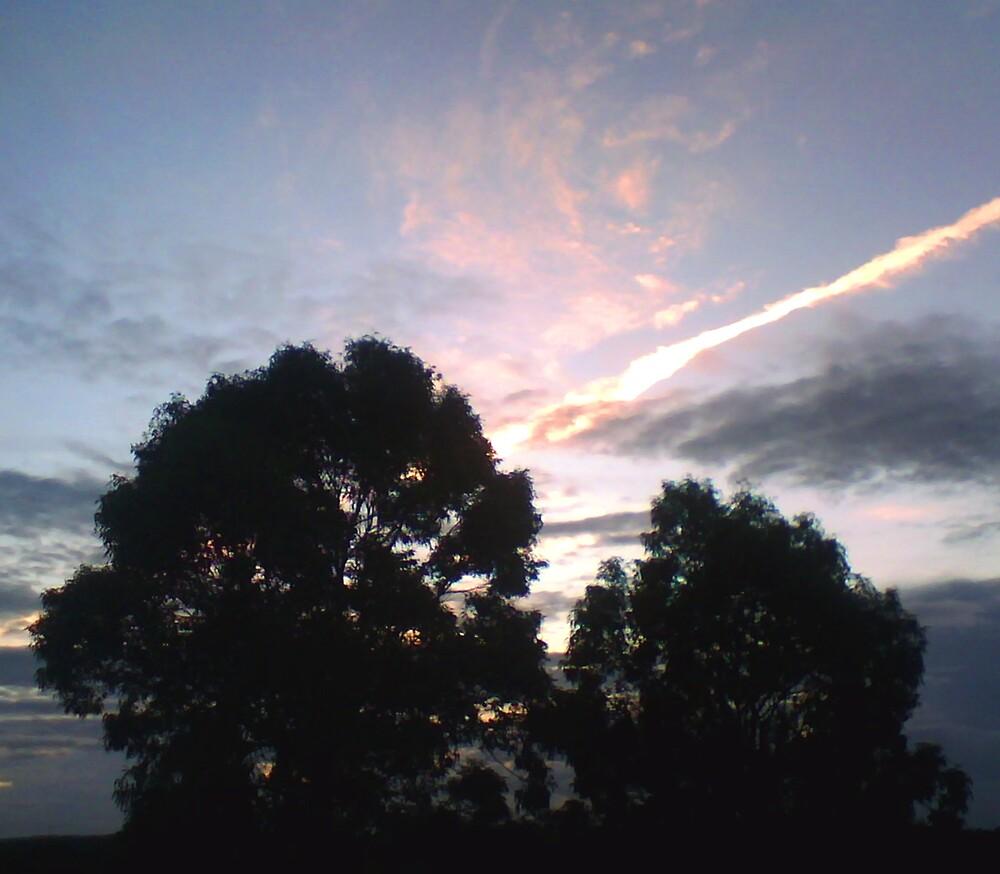 Sky Line by Allan Gowen