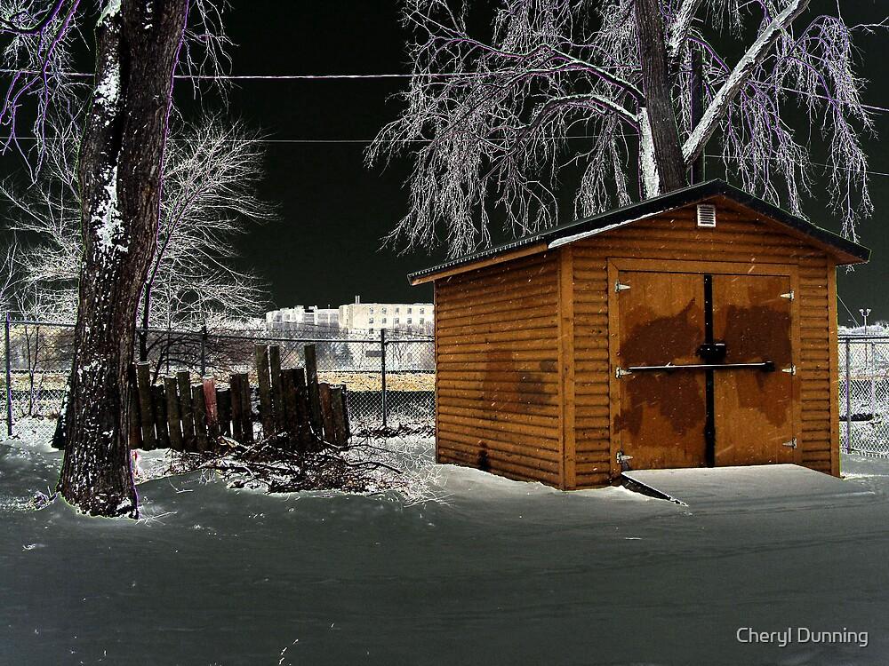 dark shed by Cheryl Dunning