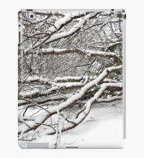SNOW SCENE 2 iPad Case/Skin