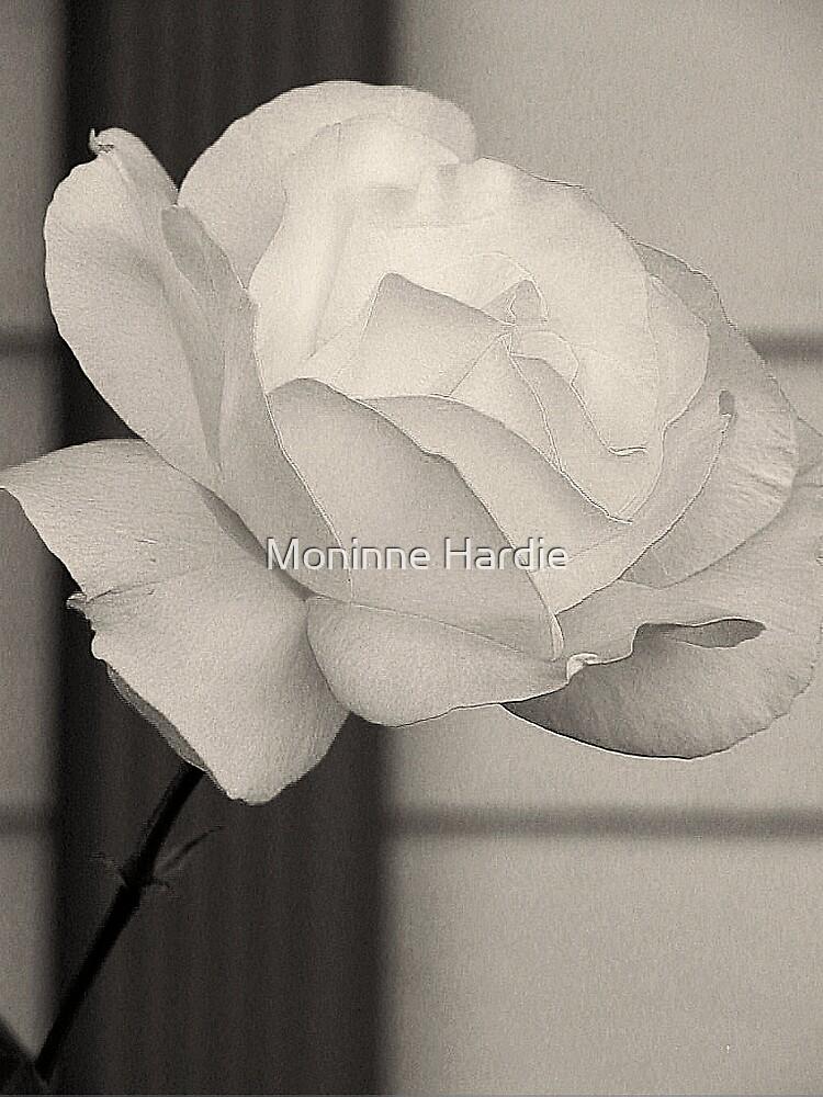 White Beauty by Moninne Hardie