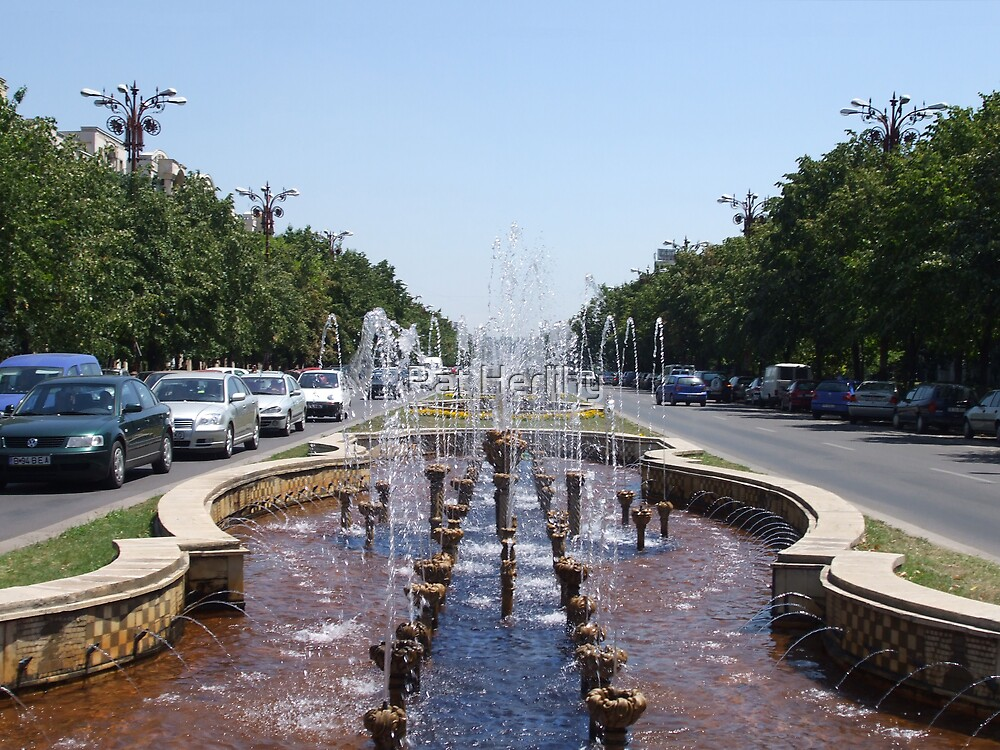 Champs Elysee Copy, Bucuresti by Pat Herlihy