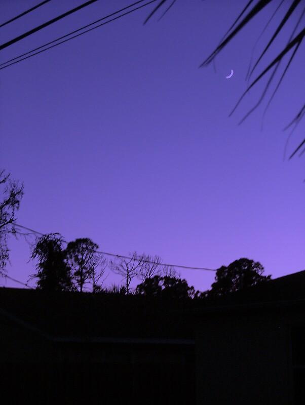 Purple Skies by Ferguson