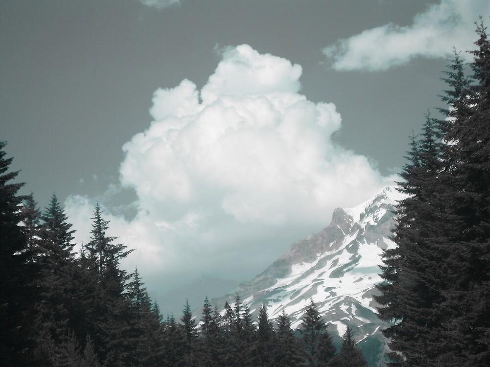 Mt. Hood  by jalexanderart