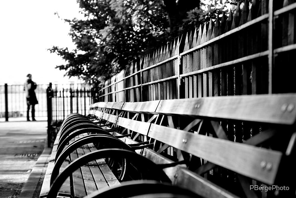Brooklyn Promenade Park Bench by PBergePhoto