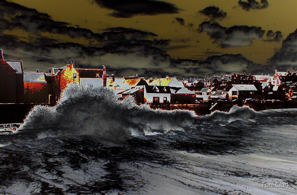 The Wild Sea by Tom Clark