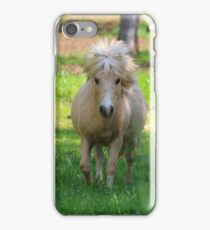 Shetland Pony iPhone Case/Skin
