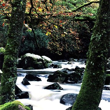 River in Dartmoor by kjhart8