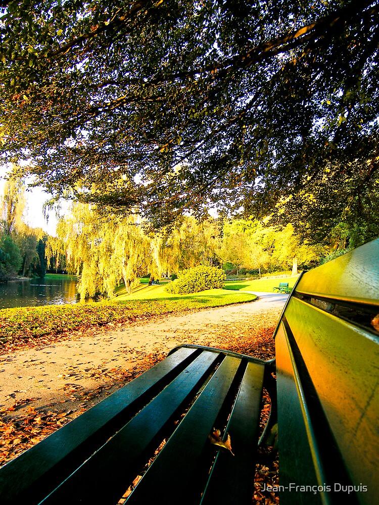 Park by Jean-François Dupuis