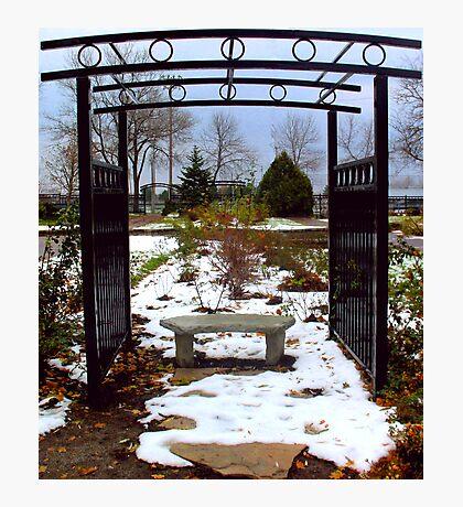Winter Arbor Photographic Print