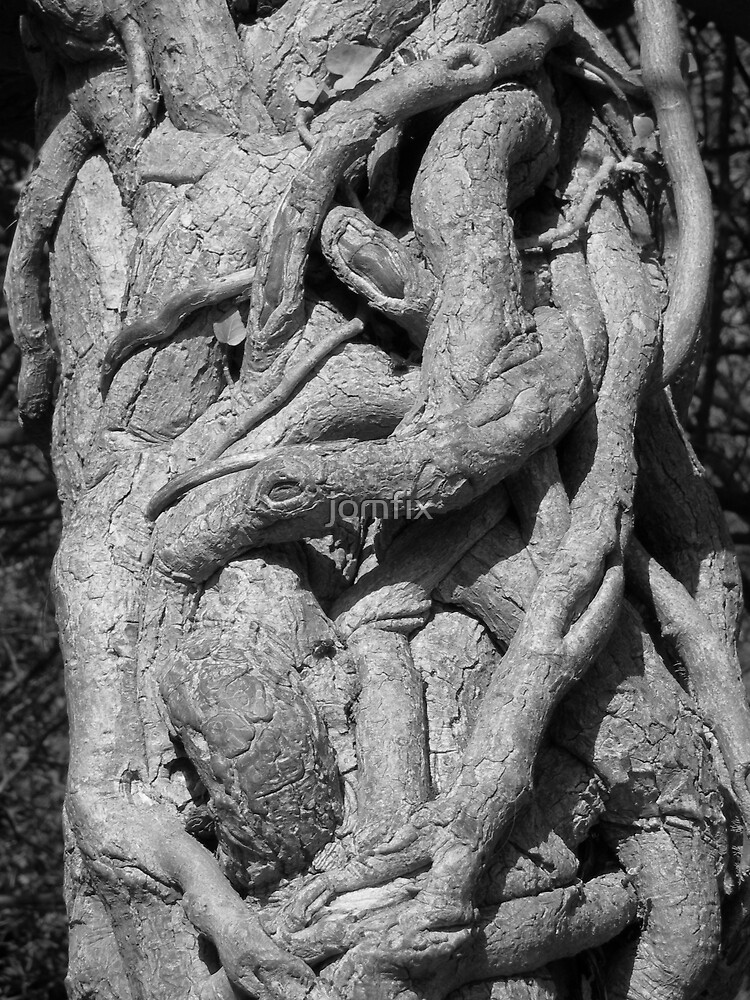 Knarly Tree by jomfix