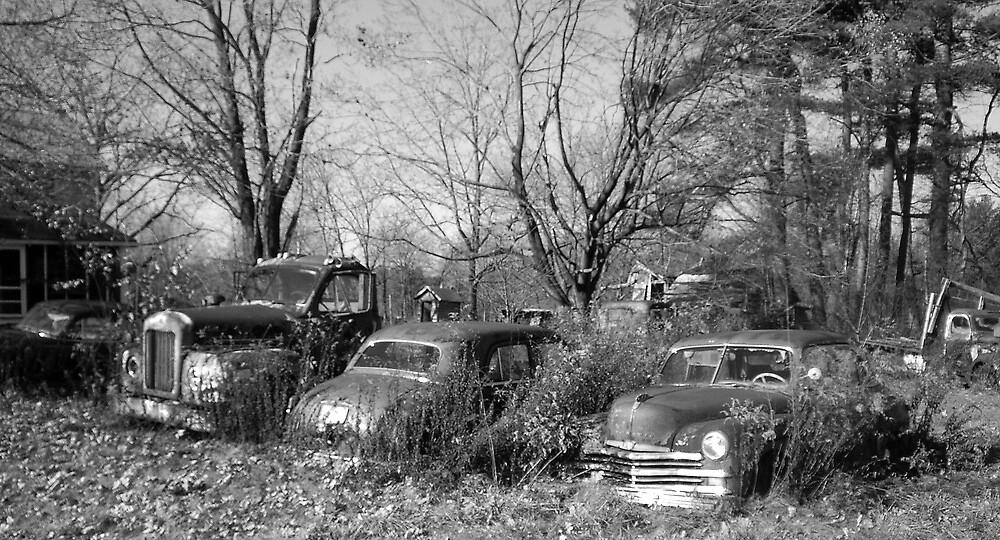 """Old Cars"" by Bridget Banik"