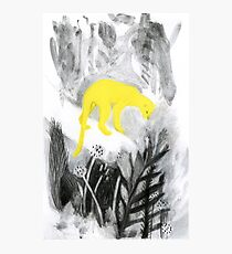 Yellow Panther Photographic Print