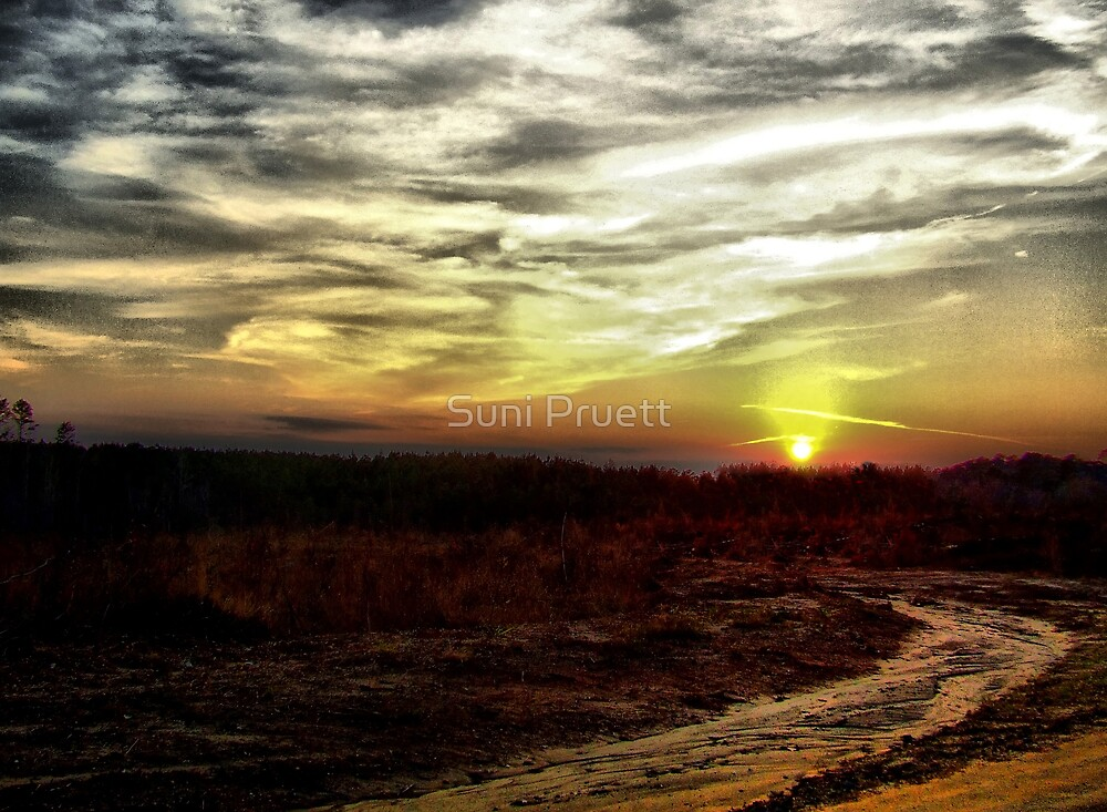 Last Light by Suni Pruett