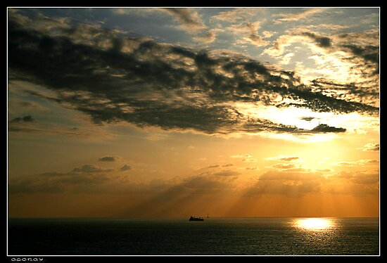 Rays by Georgi Bitar