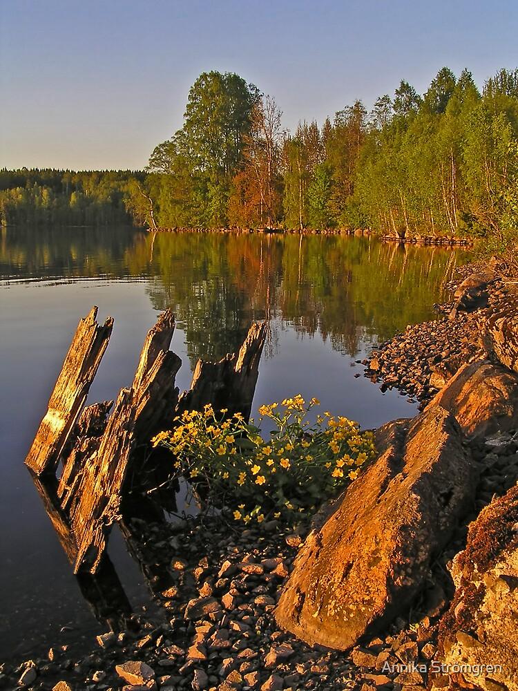 Lakeside by Annika Strömgren