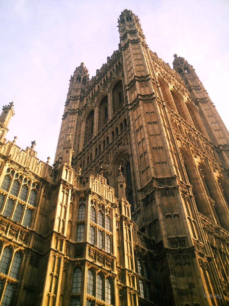 The house of Parliament by Carey