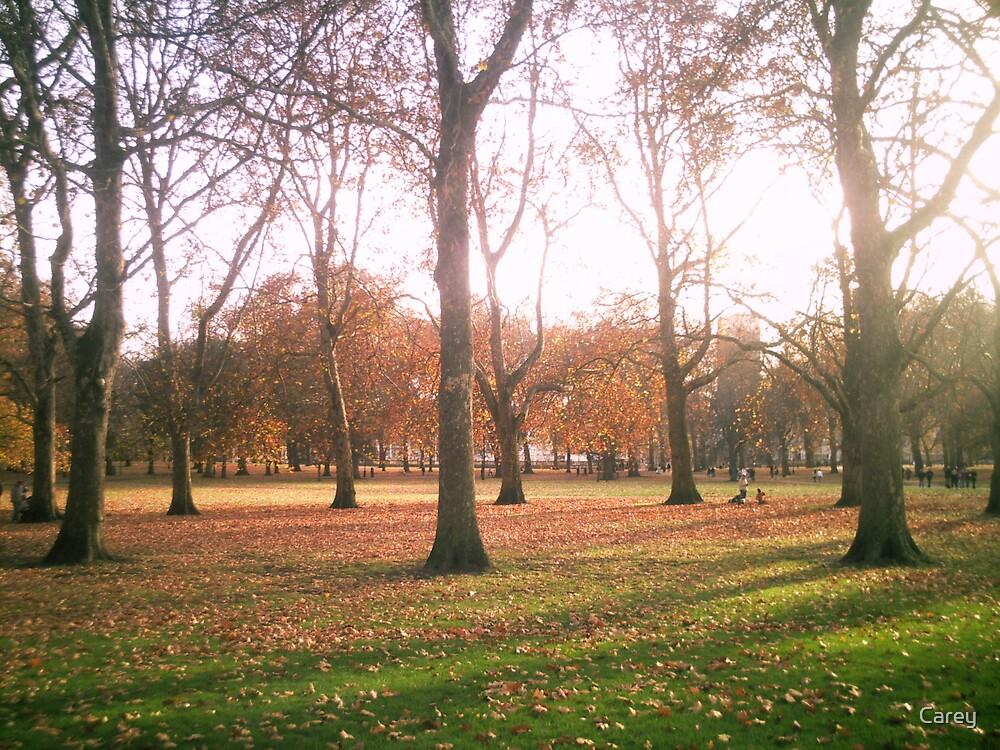 Hyde Park by Carey