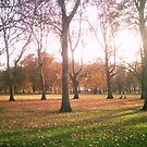 Hyde Park by Carey