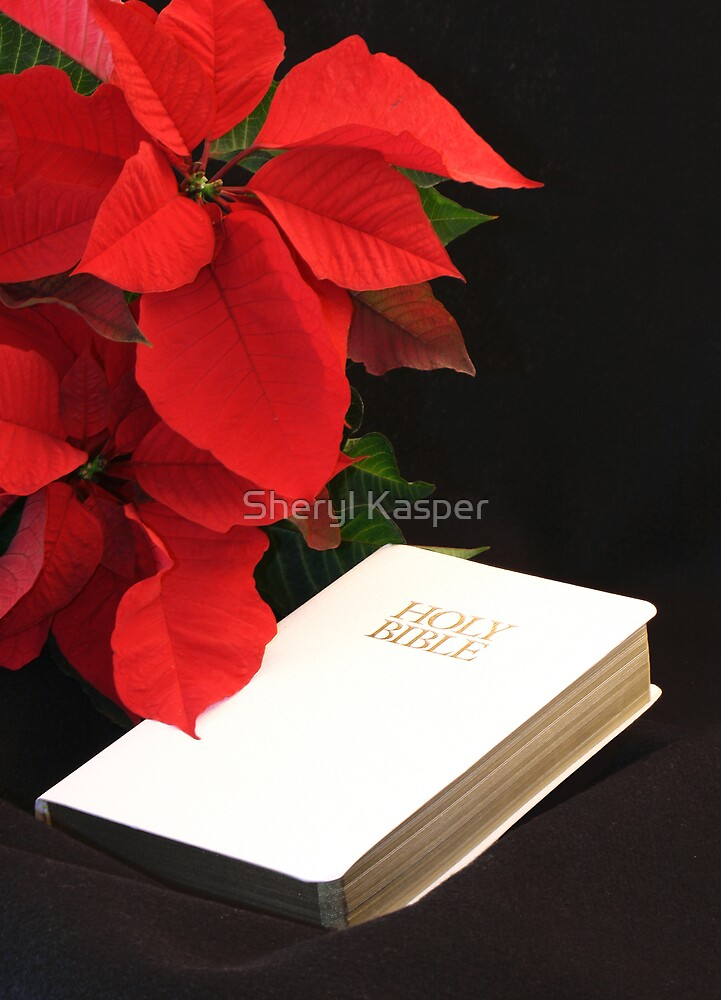 Poinsettia and Bible by Sheryl Kasper