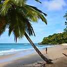The Beach (Dominican Republic) by Jola Martysz