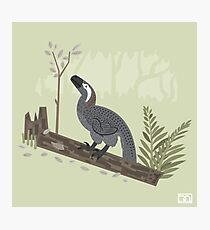 Utahraptor in the Forest Photographic Print