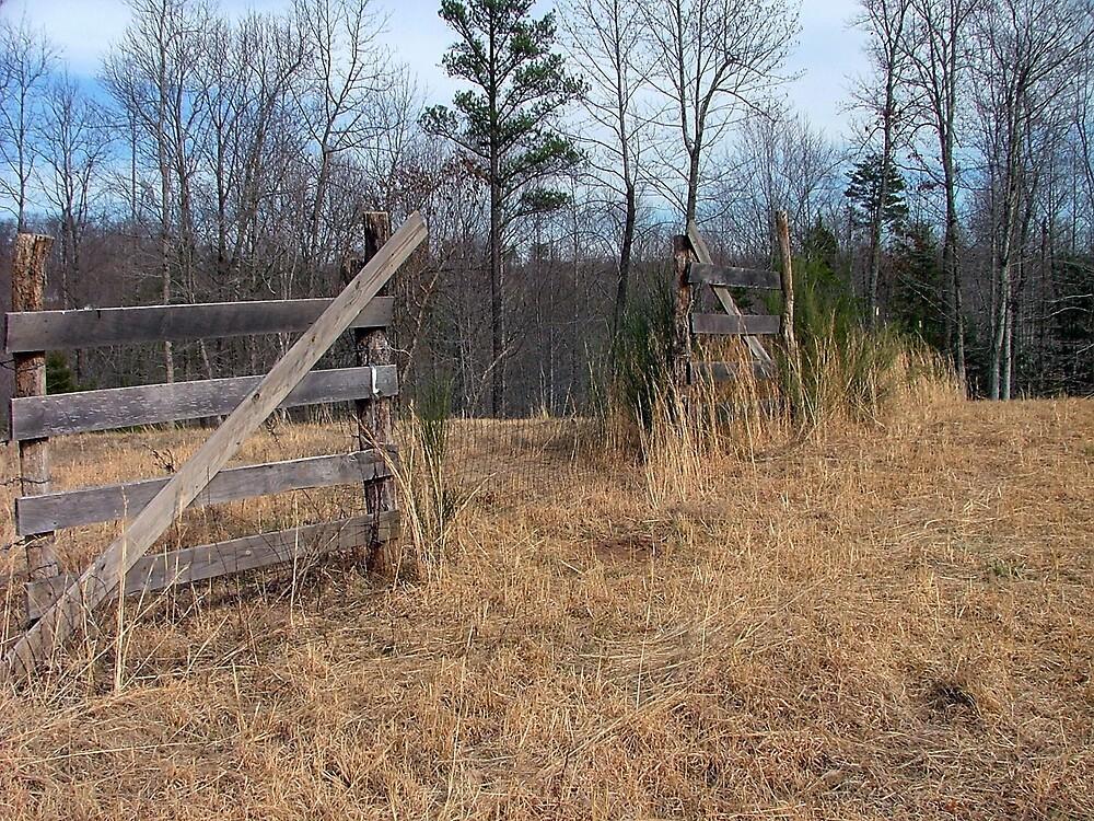 Mountain Fences...... by Ferguson