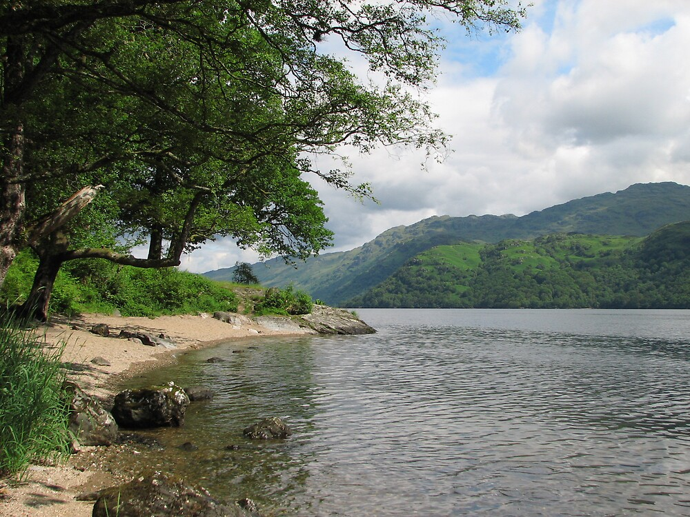 Loch Lomond in Scotland by Deborah Stewart