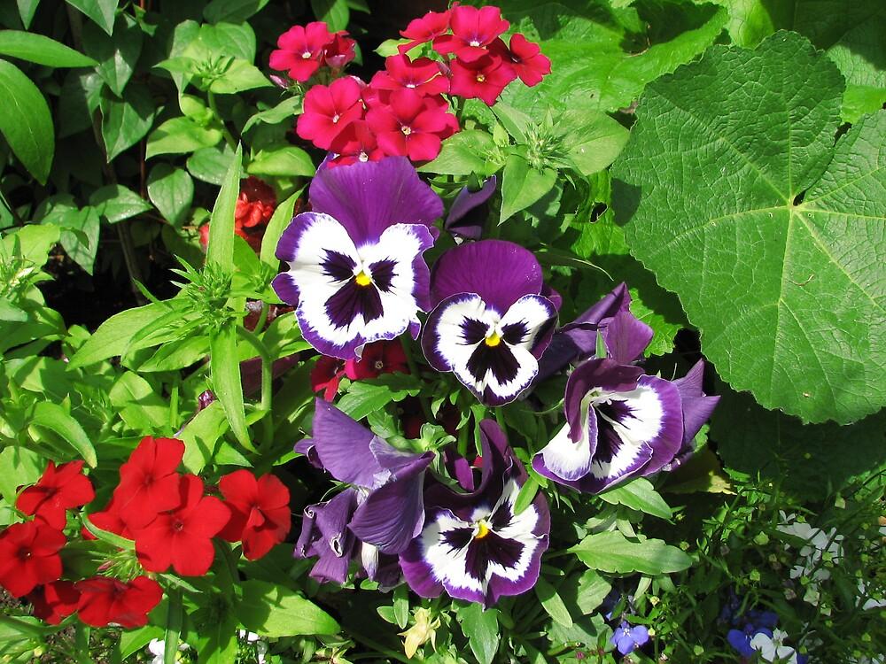 Colorful Flowers by Deborah Stewart