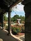 The Gardens by Chelsea Kerwath
