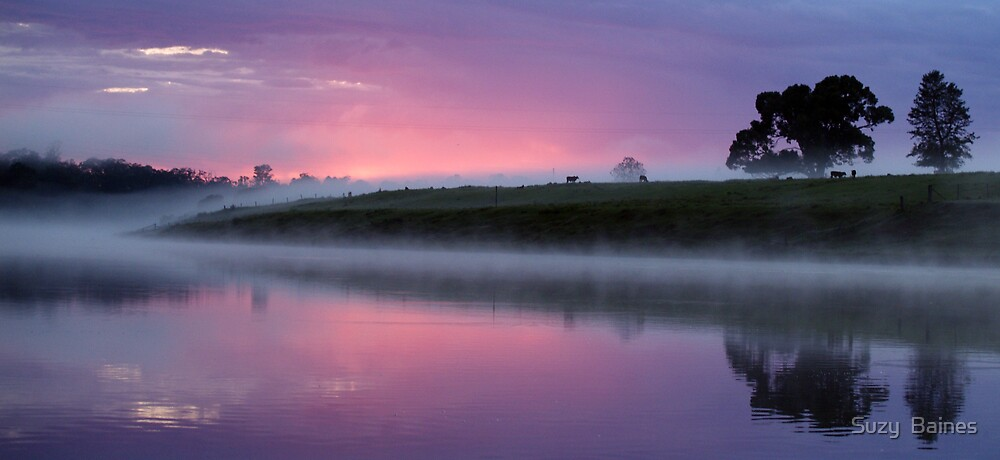 Morning on the Macleay  by Suzy  Baines