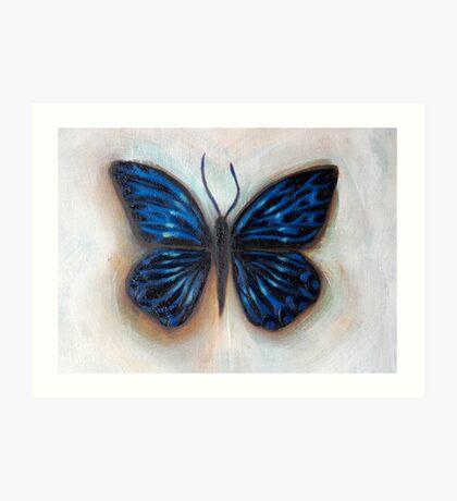 the influence of butterflies Art Print