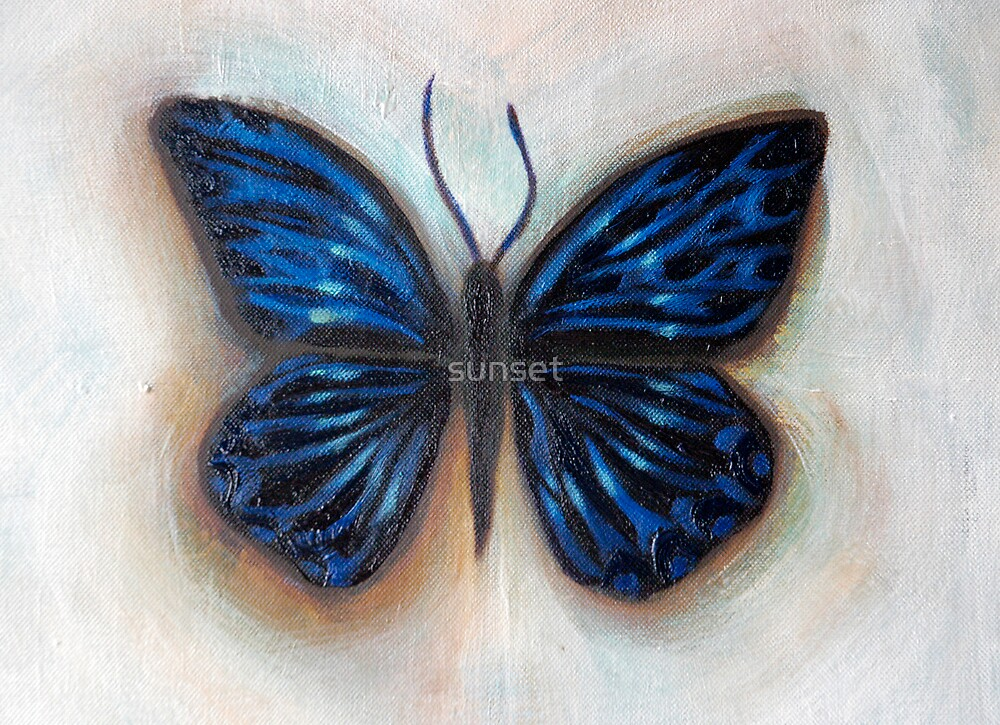 the influence of butterflies by sunset