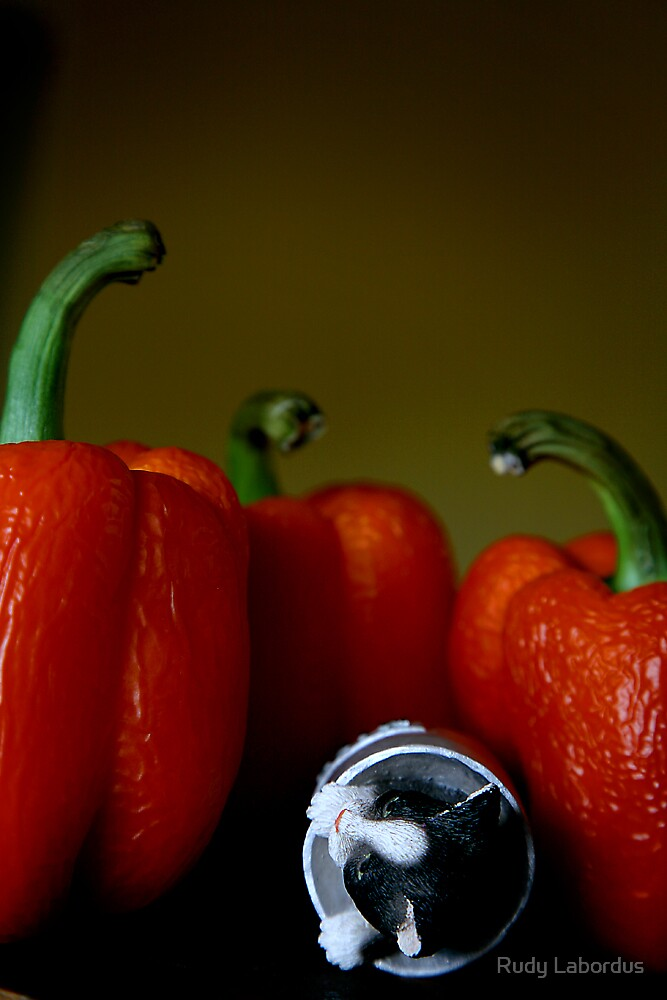attack of the killer capsicum by Rudy Labordus