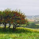 Hilltops and Hawthorns  by Paula Oakley