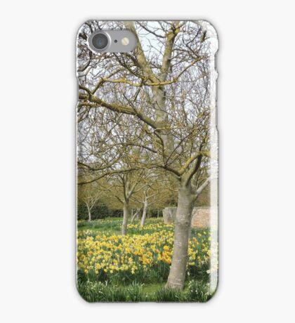 Daffodil Trees iPhone Case/Skin