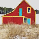 Red Barn with Blue Door by OLIVIA JOY STCLAIRE