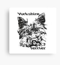 Yorkshire Terrier  Cute dog  lovely pet  Canvas Print