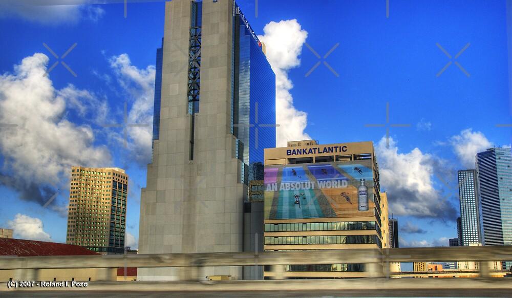 Downtown Miami - DSC_1551 by photorolandi