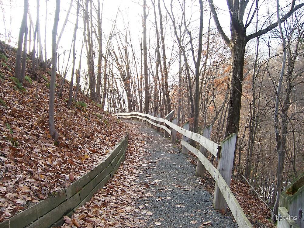 Pathway by batkins