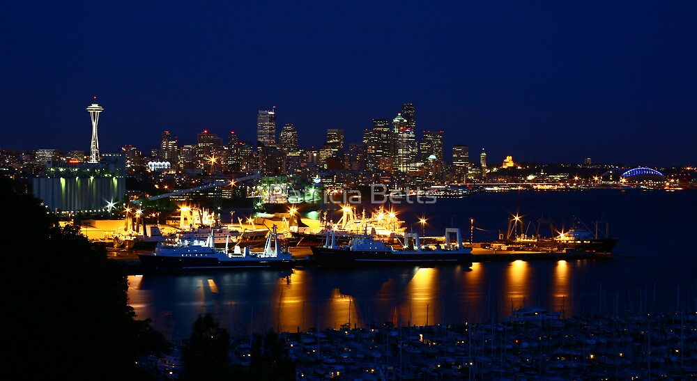 Seattle Skyline At Night by Patricia Betts