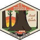 Sequoia-Nationalpark von moosewop