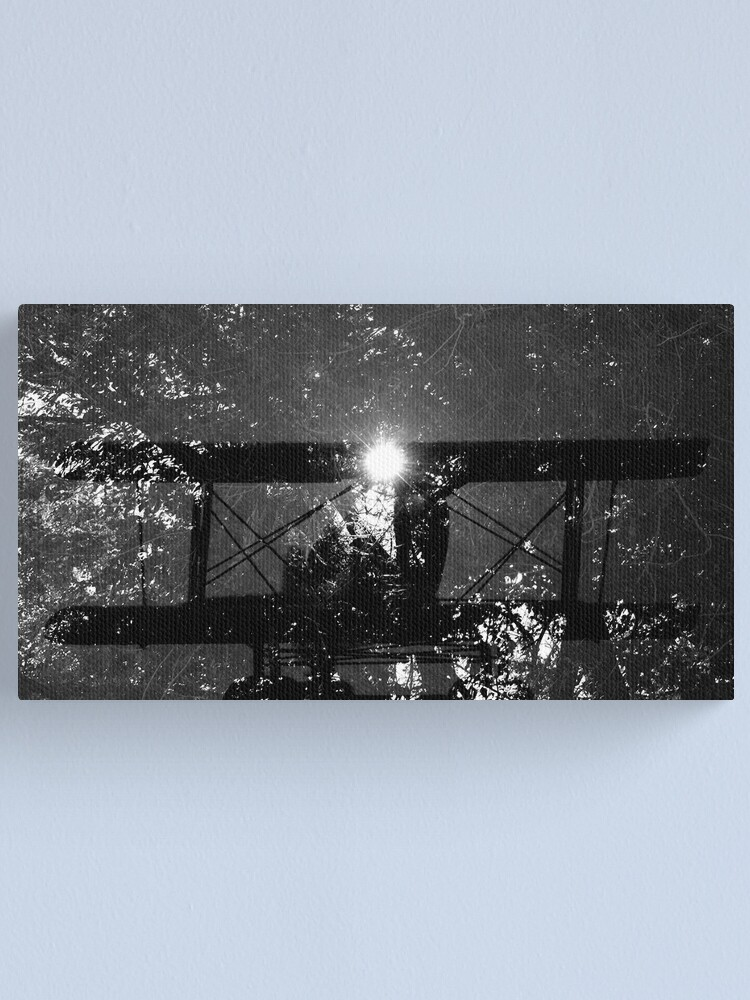 Alternate view of Dream Flight Canvas Print