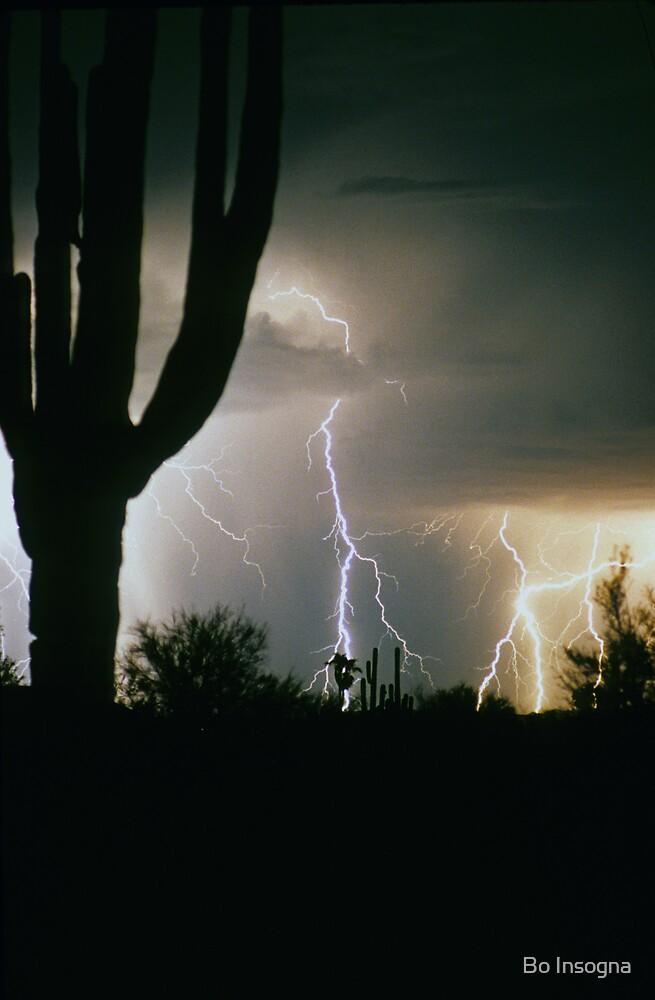 Lightning in the desert by Bo Insogna