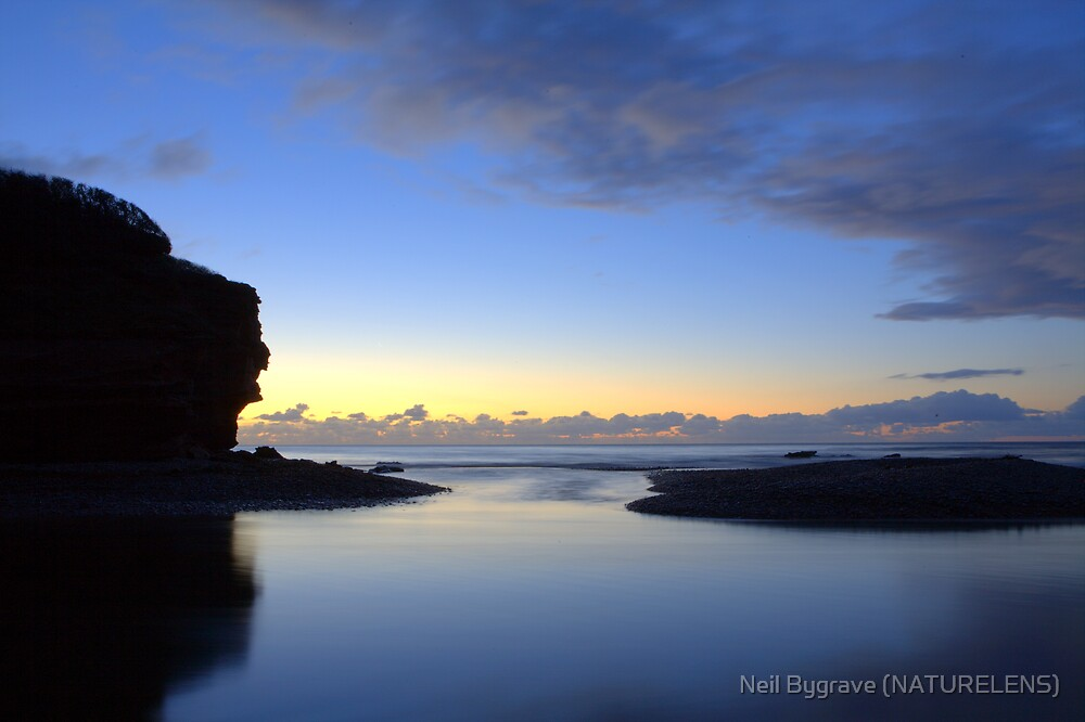 Old Man of Budleigh Salterton by Neil Bygrave (NATURELENS)