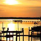 Southern Maryland Sunset by Paul Lenharr II